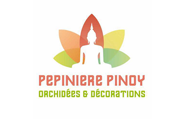 Pinoy Orchidées